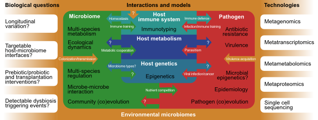 """Host/Microbiome/Pathogen interactions"" (MSB 2013)"